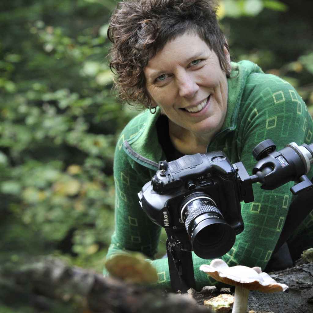 biography of Alison Pouliot photographer and ecologist