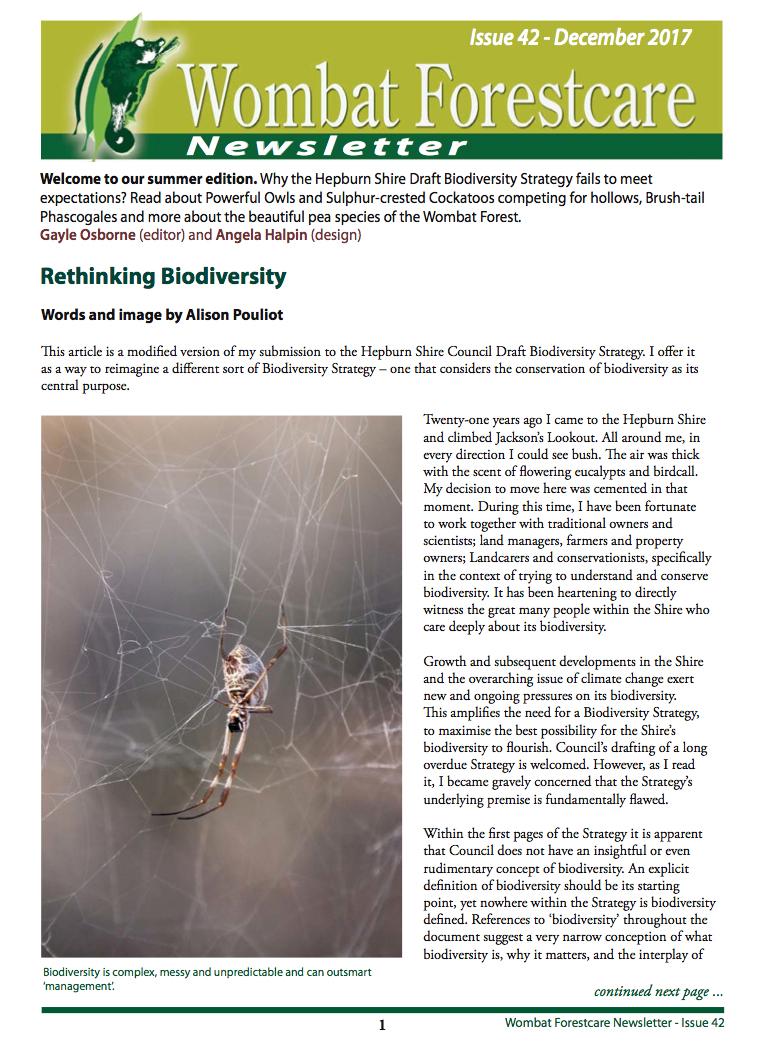 Rethinking Biodiversity